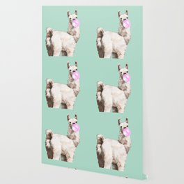 Baby Llama Blowing Bubble Gum Wallpaper