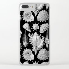 Black and White Beach Shells Clear iPhone Case