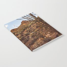 Saguaro Garden Notebook