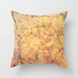 #240 Throw Pillow