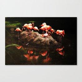 Flamingo Island  Canvas Print