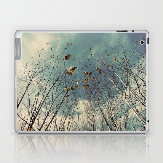 Sereta Laptop & iPad Skin