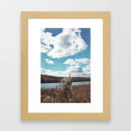 Flock above Currents Framed Art Print