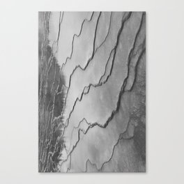 biscuit basin or just squiggles Canvas Print