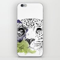 cheetah iPhone & iPod Skins featuring Cheetah by zoza
