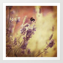 {flight of the bumblebee} Art Print