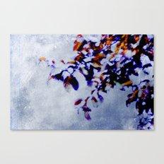 colorful breeze Canvas Print