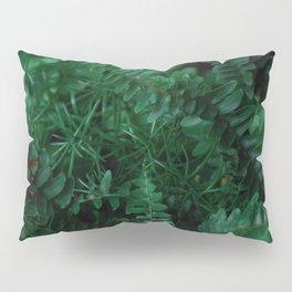 Leaves of Life Pillow Sham