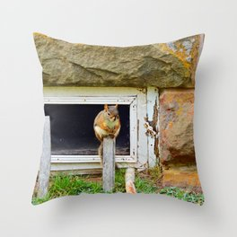 Church Squirrel Throw Pillow