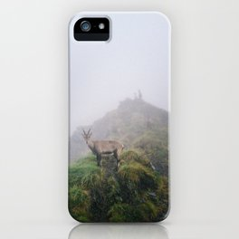 Ibex on the path iPhone Case