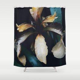 Monochrome Iris Shower Curtain