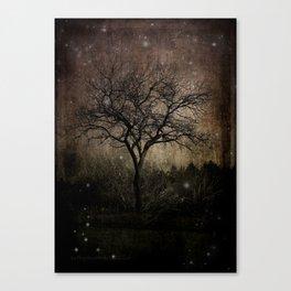 Lights in the Dark Canvas Print