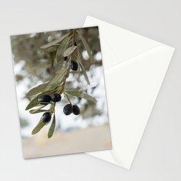 FT. BELVOIR, ISRAEL - Olive Branch Stationery Cards