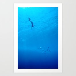 Dive through the rays of sunlight Art Print