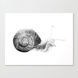 Happy Little Snail Canvas Print