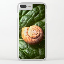 The Little Sleeping Snail Clear iPhone Case