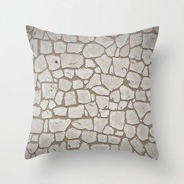 Stone FLoor Throw Pillow