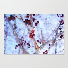 Frostbite  Canvas Print