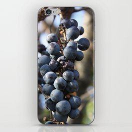 Wild Grapes iPhone Skin