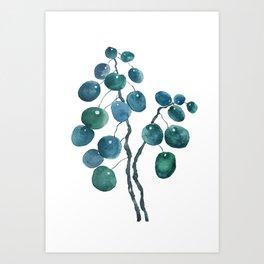 Chinese money plant watercolor Art Print