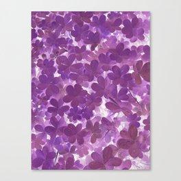 Clover II Canvas Print