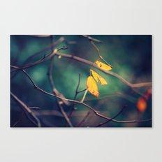 sweet November Canvas Print