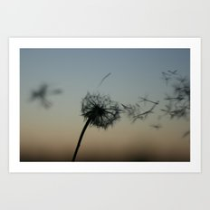 wishes on the wind Art Print