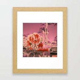 PINK ORANE TREE PALM WATER Framed Art Print