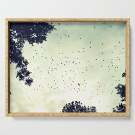 Flock of birds at sunset Serving Tray