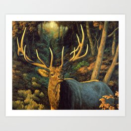 Bull Elk in Autumn Art Print