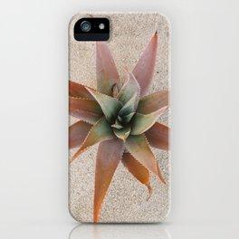 Mexico Succulent iPhone Case