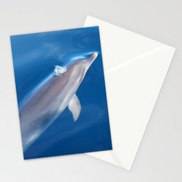 Dolphin and dreams Stationery Cards