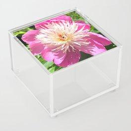 Pretty in Pink Peony Acrylic Box