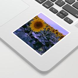 sunflower wonderland Sticker