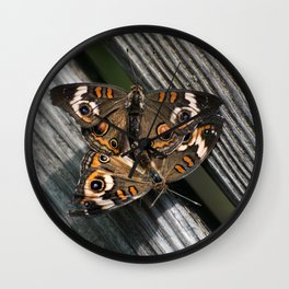 in love ... Buckeye Butterfly (Junonia coenia) Wall Clock