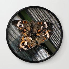 in love ... Buckeye Butterfly (Junonia coenia) Wall Clock