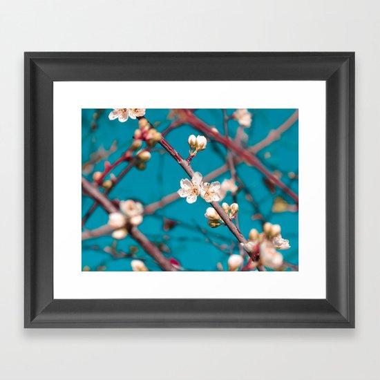 Blooming Framed Art Print