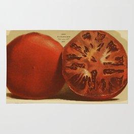 Vintage Illustration of a Sliced Tomato (1871) Rug