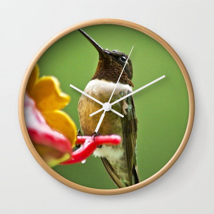 Rainy Day Hummingbird Wall Clock