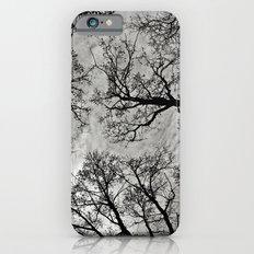 Meditative Power of Trees Slim Case iPhone 6s