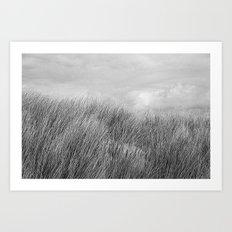 Beach grass - black and white Art Print
