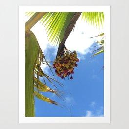 Puerto Rico Condado beach fruit Art Print