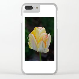 Red-Tipped Tulip by Teresa Thompson Clear iPhone Case