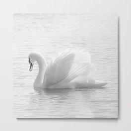 Elegant. Metal Print