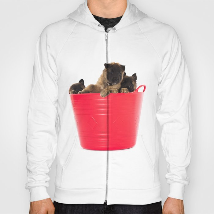 Three puppies in red laundry basket Hoody