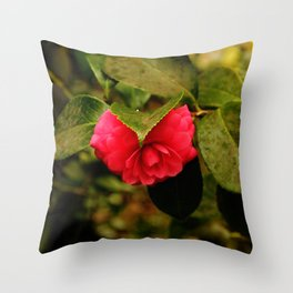 Early Pink Flower Blooms as Snow Flake settles on top Throw Pillow