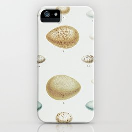 Special Delivery: Antique Egg Print iPhone Case
