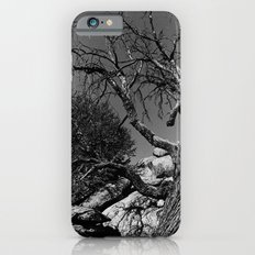 Desolance iPhone 6s Slim Case