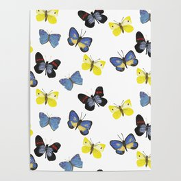 Butterfly Mania Poster