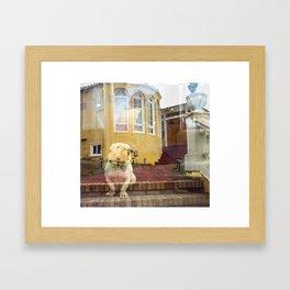 Suburban Bulldog Framed Art Print